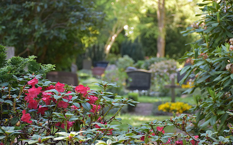 Friedhof Preetz