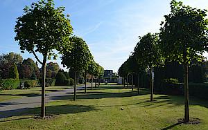 Friedhof Lägerdorf