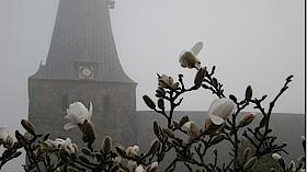 Nieharde- Gottesdienst in Sörup