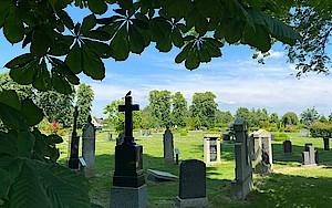 Friedhof Wilster